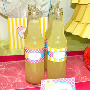 baby-sister-party-individual-bottle-wrappers