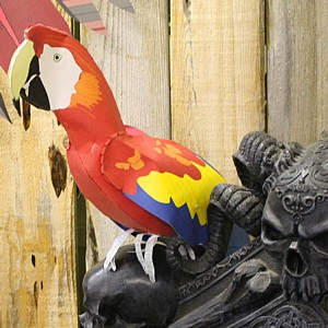 pirate-parrot